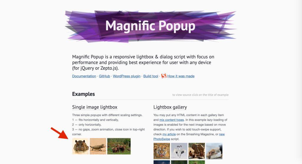 magnific popupの画像